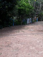 Image for Chácara a 30 Km de Caldas Novas