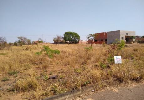 Image for Alto da Boa Vista